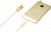 Apple Lightning to USB Cable (1m) (MD818) (HC, no box, i5, gold) рис.3