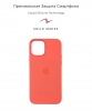 Apple iPhone 12/12 Pro Silicone Case (OEM) - Pink Citrus рис.2